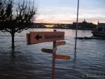 Hochwasser am 10.1.11 - Rheinufer