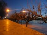Hochwasser am 10.1.11  - Lampen im Wasser