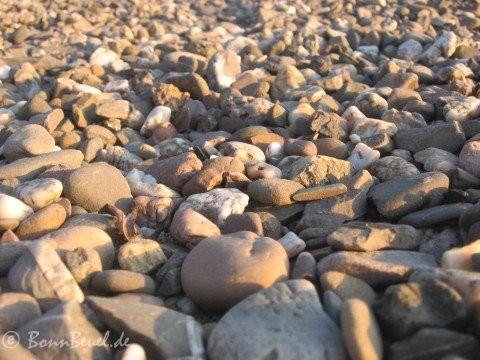 Projekt 52 - Leblos - Steine