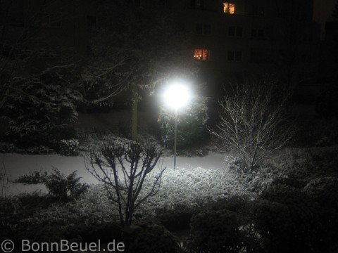 Schnee in Bonn Beuel