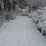 Schnee in Bonn Beuel 05.01.2009
