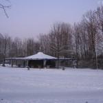 Beuel Blauer Affe im Schnee