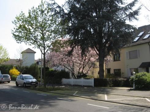 Limpericher Straße / Ringstraße 10.04.09