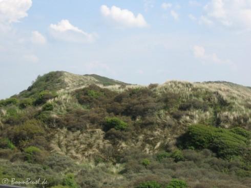 Zoutelande - Blick auf die Dünen