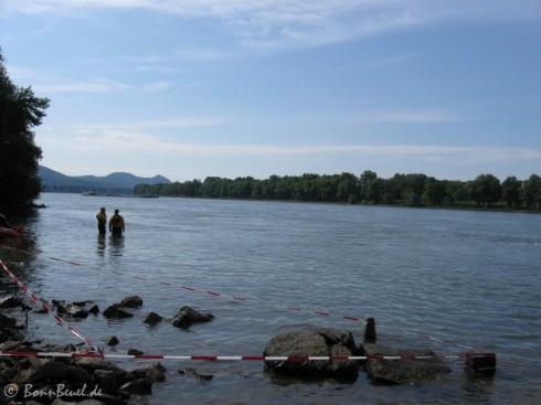 19. Bonn Triathlon: Rhein - Schwimmausstieg
