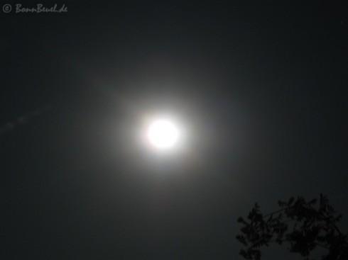 Mond - Projekt 52 im August 2009