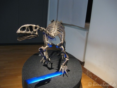 Leonerasaurus im Museum König Bonn - 28.12.09