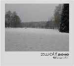 Januar Rhein - zwölf2010