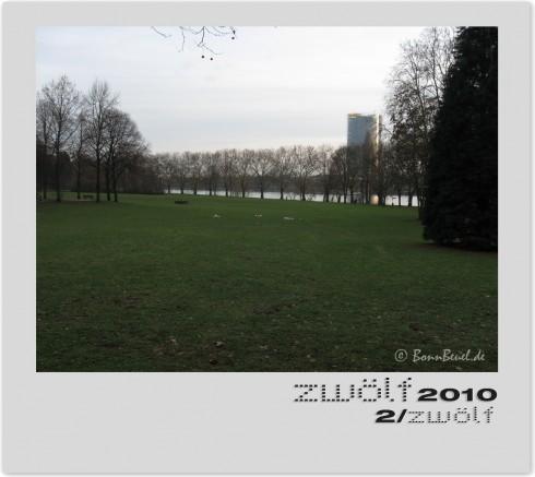Rheinblick - Anfang Februar 2010