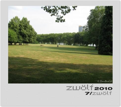 Rheinaue Juli zwölf2010
