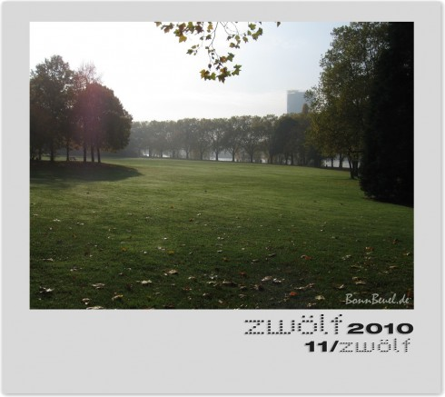 November Rhein zwölf2010