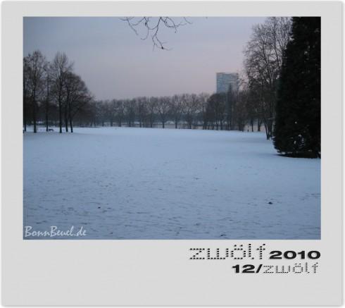 zwölf2010 Dezember Rhein