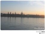 zwölf2011 - Februar - Beueler Rheinufer