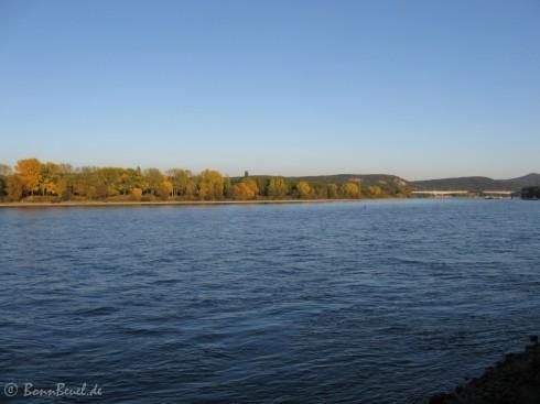 Herbst, Rhein 2011