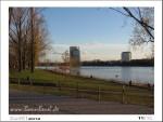 November zwölf2012 | Rheinufer - Beuel